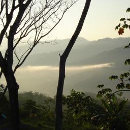 Costa Rica! Day 3: Heads in the Clouds